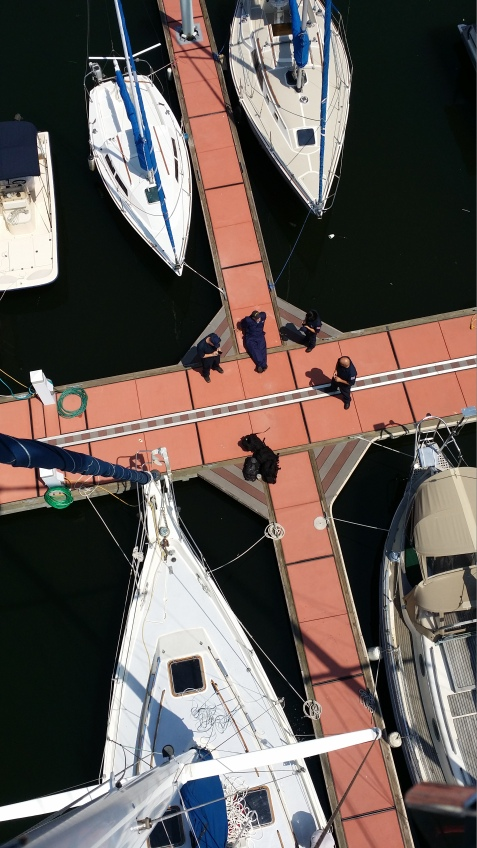 U.S. Coast Guard Sailboat Rigging Inspection