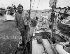 Sir Robin Knox Johnston
